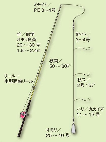 55ac49f7 e958 4d9e b322 f10285eb0f45
